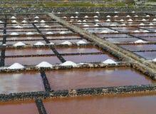 Stagni di evaporazione del sale di Salina del Carmen fotografie stock
