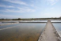 Stagni di evaporazione dell'azienda agricola del sale, Portogallo Fotografia Stock