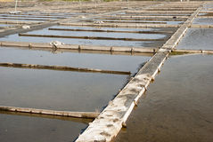 Stagni di evaporazione dell'azienda agricola del sale, Portogallo Fotografie Stock Libere da Diritti