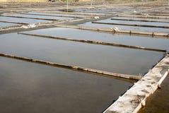 Stagni di evaporazione dell'azienda agricola del sale, Portogallo Immagine Stock