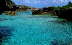 Stagni di Limu, Niue Fotografia Stock