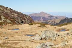 Stagni nella montagna Fotografia Stock