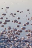 Stagni salini di evaporazione Fotografia Stock Libera da Diritti
