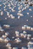 Stagni salini di evaporazione Immagini Stock