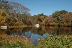 Stagno in autunno fotografie stock
