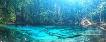 Stagno blu verde smeraldo Krabi, Tailandia Immagine Stock Libera da Diritti