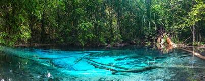Stagno blu verde smeraldo Krabi, Tailandia Fotografia Stock Libera da Diritti