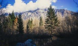 Stagno calmo nel parco nazionale di Ecrins Immagine Stock