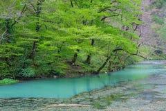 Stagno con acqua blu in nuovo Athos Fotografia Stock