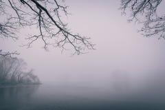 Stagno congelato con pochi alberi nella mattina nebbiosa fredda di inverno Immagine Stock