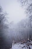Stagno congelato con pochi alberi nella mattina nevosa nebbiosa fredda Immagine Stock