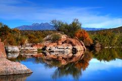 Stagno del deserto fotografia stock libera da diritti