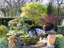 Stagno del giardino con i vasi del confine e della pianta del fiore Immagine Stock Libera da Diritti