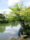 Stagno del giardino di Kenrokuen Immagini Stock Libere da Diritti