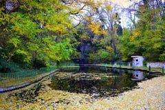 Stagno del parco della città di autunno Fotografia Stock