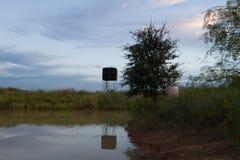 Stagno del ranch Fotografia Stock