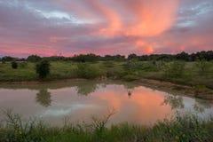 Stagno del ranch Fotografia Stock Libera da Diritti
