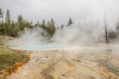 Stagno del turchese in Yellowstone Immagine Stock