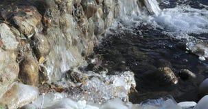 Stagno della cascata nel parco video d archivio