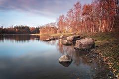 Stagno della foresta in autunno fotografie stock libere da diritti