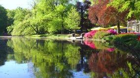 Stagno della primavera in parco stock footage