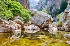 Stagno della roccia in una gola Fotografia Stock