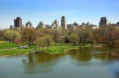 Stagno della tartaruga, Central Park, nuovo Fotografia Stock Libera da Diritti