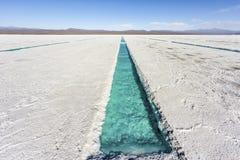 Stagno di acqua sulle saline Grandes Jujuy, Argentina fotografia stock
