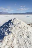 Stagno di acqua sulle saline Grandes Jujuy, Argentina immagini stock
