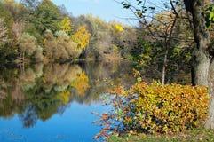 Stagno di autunno in sosta Immagine Stock