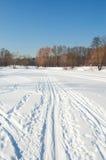 Stagno di inverno in sosta Fotografia Stock Libera da Diritti