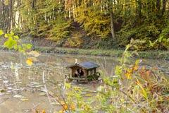 Stagno di legno miniatura sveglio del lago della casa che fa un'escursione l'ambiente di viaggio fotografia stock libera da diritti