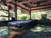 Stagno di pietra con acqua calda a partire dalla sorgente di acqua calda in stazione termale Fotografie Stock