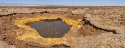 Stagno di ribollimento acido nella depressione di Danakil in Etiopia, Africa fotografie stock libere da diritti