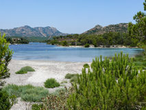 Stagno di Sa Curcurica - zona umida adorabile alla costa sarda Fotografie Stock Libere da Diritti