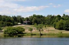 Stagno di Shibaevsky nel ` naturale-storico di Kuzminki-Lublino del ` del parco immagine stock libera da diritti