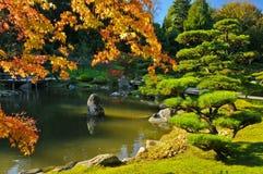 Stagno e fogliame di caduta in giardino giapponese Fotografia Stock Libera da Diritti