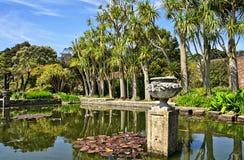 Stagno ed alberi in Logan Botanic Gardens Fotografia Stock Libera da Diritti