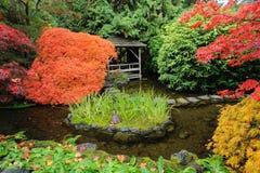Stagno giapponese del giardino fotografia stock libera da diritti