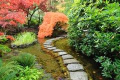 Stagno giapponese del giardino Immagini Stock Libere da Diritti