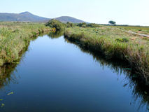 Stagno Longu di Posada - Billabong av floden Posada Arkivbilder