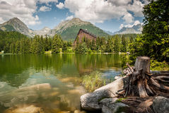 Stagno in montagne ad estate Immagini Stock