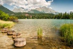 Stagno in montagne ad estate Fotografia Stock Libera da Diritti