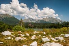 Stagno in montagne ad estate Fotografie Stock Libere da Diritti