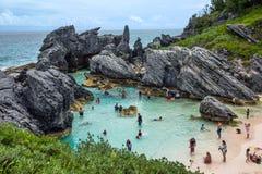 Stagno naturale Bermude Immagine Stock