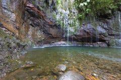 Stagno naturale sul Madera, Portogallo Immagini Stock Libere da Diritti