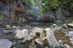 Stagno naturale sul Madera, Portogallo Fotografia Stock Libera da Diritti