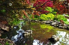 Stagno nel giardino di zen Fotografia Stock