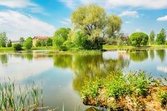 Stagno nel villaggio Kabile, Lettonia Fotografia Stock