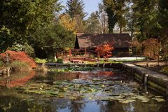 Stagno nello stile giapponese nel pomeriggio di autunno fotografia stock libera da diritti